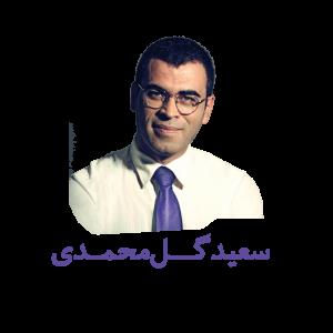 سعید گل محمدی